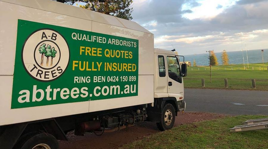 Truck From AB Trees Perth
